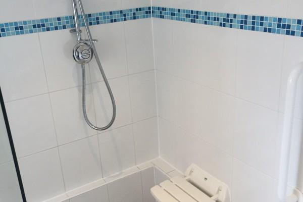 Assisted_Bathroom_5